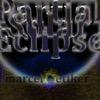 ALBUM: Partial Solar Eclipse